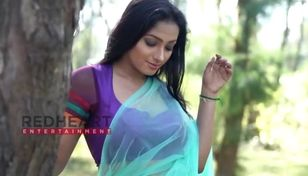 Aranye saree shreemoyee sky color saree